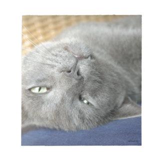 リラックスして下さい! 灰色ののどを鳴らす猫のメモ帳 ノートパッド