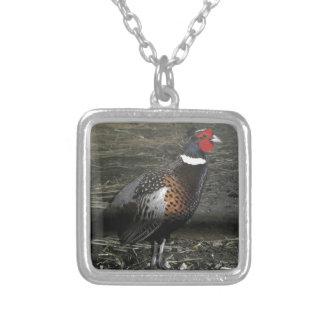 リングネックのキジの鳥 シルバープレートネックレス