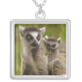 リング後につかれたlemurs (Lemurのcatta)母及び赤ん坊 シルバープレートネックレス