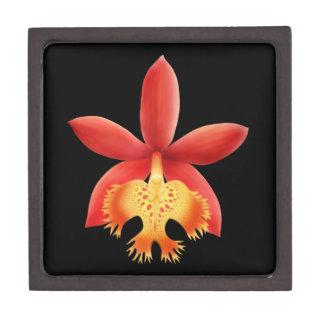リード茎のEpidendrumの蘭の優れたギフト用の箱 ギフトボックス
