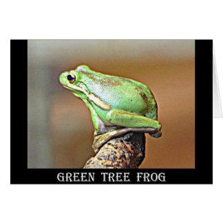 ルイジアナの緑のアマガエル カード