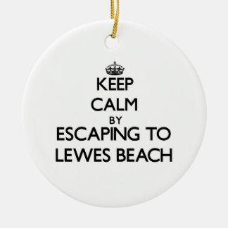 ルイスのビーチデラウェア州への脱出によって平静を保って下さい セラミックオーナメント