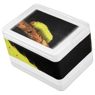 ルナガの幼虫 IGLOOクーラーボックス