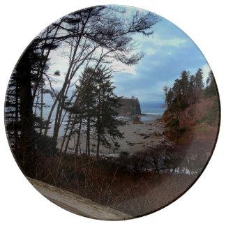 ルビー色のビーチのオリンピック国立公園 磁器プレート