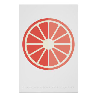 ルビー色の柑橘類のレトロのフルーツポスター60年代の70年代は引用します ポスター