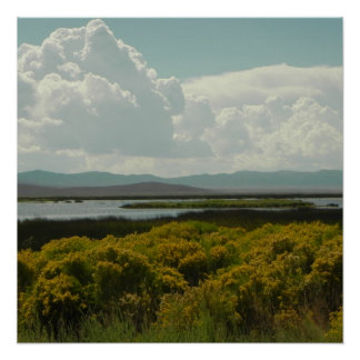 ルビー色の沼地、ネバダ ポスター