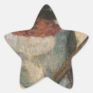 ルビー色のThroatedハチドリ 星シール