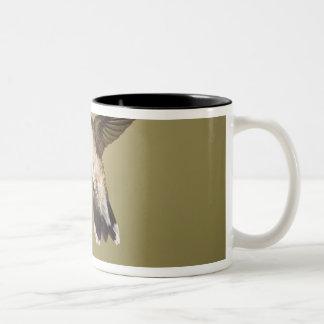 ルビーthroatedハチドリのArchilochus ツートーンマグカップ