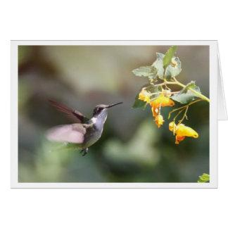 ルビーthroatedハチドリ カード