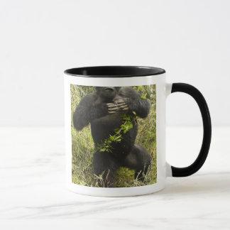 ルワンダの火山国立公園。 山 マグカップ