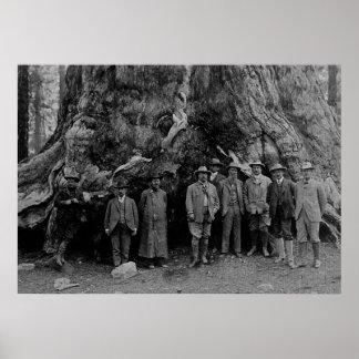 ルーズベルトおよびジョンMuirカリフォルニア1903年大統領 ポスター