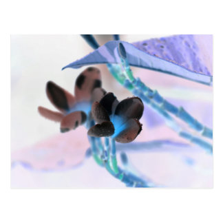 レイは花のパステルの端正な花のデザインを逆にします ポストカード