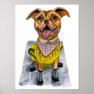 レインコートの水彩画のピット・ブル犬 ポスター