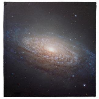 レオの渦状銀河 ナプキンクロス