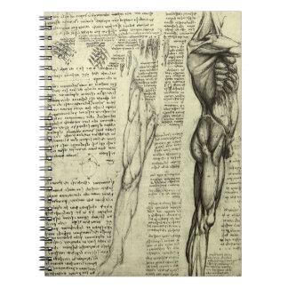 レオナルド・ダ・ヴィンチ著人間の解剖学の男性筋肉 ノートブック