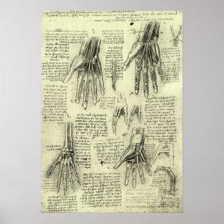 レオナルド・ダ・ヴィンチ著人間手の解剖学 ポスター
