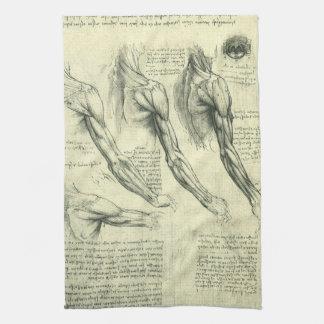 レオナルド・ダ・ヴィンチ著腕および肩の解剖学 キッチンタオル