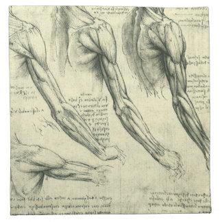 レオナルド・ダ・ヴィンチ著腕および肩の解剖学 ナプキンクロス