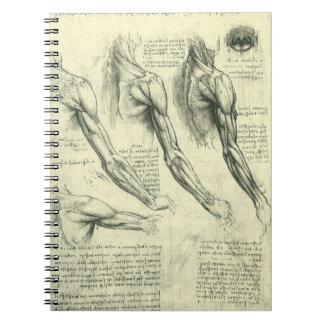 レオナルド・ダ・ヴィンチ著腕および肩の解剖学 ノートブック