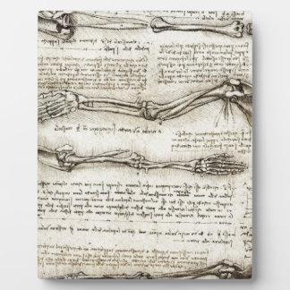 レオナルド・ダ・ヴィンチ-腕のアートワークの勉強 フォトプラーク