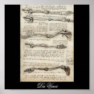 レオナルド・ダ・ヴィンチc. 1510年著腕の勉強 ポスター