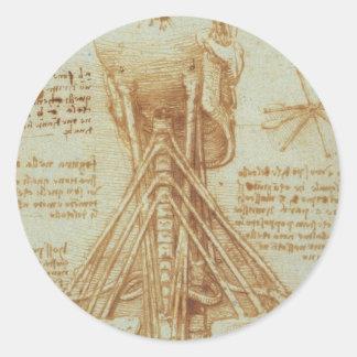 レオナルド・ダ・ヴィンチc. 1515年著首の解剖学 ラウンドシール