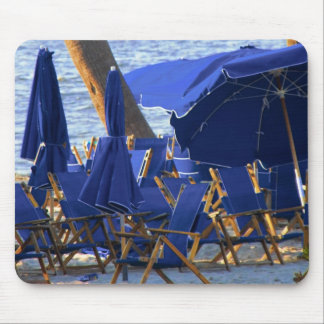レスリーのコショウによるビーチの群集 マウスパッド