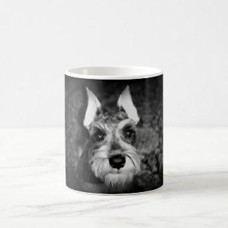 レックス マジックマグカップ