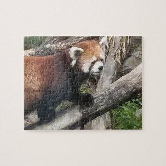 レッサーパンダのパズル ジグソーパズル
