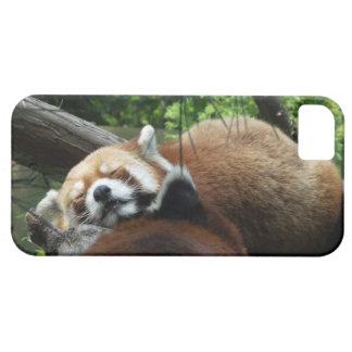 レッサーパンダの例 iPhone SE/5/5s ケース