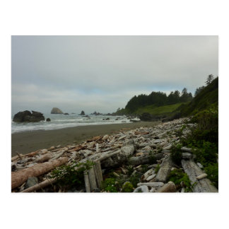レッドウッドの国立公園の隠されたビーチI ポストカード