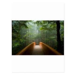 レッドウッドの森林橋 ポストカード