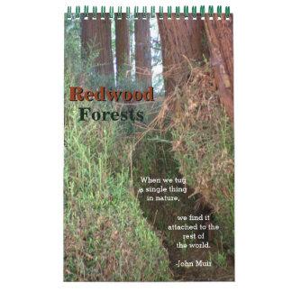 レッドウッドの森林 カレンダー