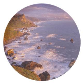 レッドウッドの海岸線、カリフォルニア プレート