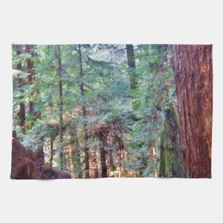 レッドウッドシリーズ#2: 木を通して キッチンタオル