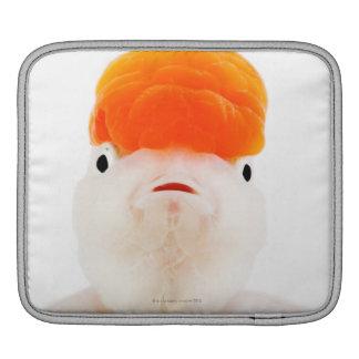 レッドキャップのlionheadの金魚(フナのauratus) iPadスリーブ