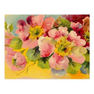 レトロのシックでエレガントなピンクのヴィンテージの花柄のサクラソウ ポストカード