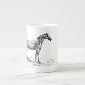 レトロの馬筋肉解剖学の写真 ボーンチャイナカップ