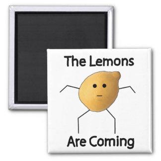 レモンは来ています! マグネット