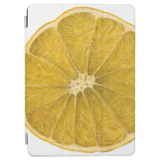 レモン iPad AIR カバー