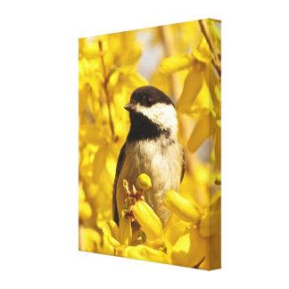 レンギョウの花のキャンバスのプリントの《鳥》アメリカゴガラの鳥 キャンバスプリント