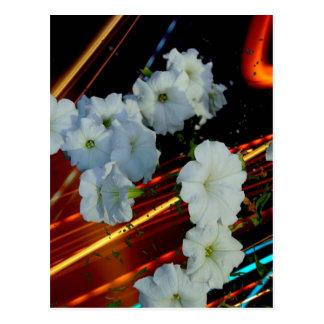 レーザーの花 ポストカード
