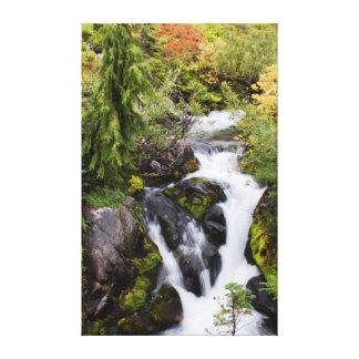 レーニア山国立公園、秋の流れ キャンバスプリント