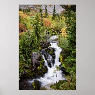 レーニア山国立公園、秋の流れ ポスター