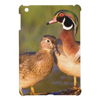 ログインの沼地のアメリカオシそして女性 iPad MINIケース