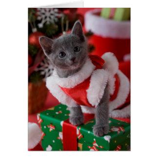 ロシアので青い子ネコおよびクリスマス2 カード