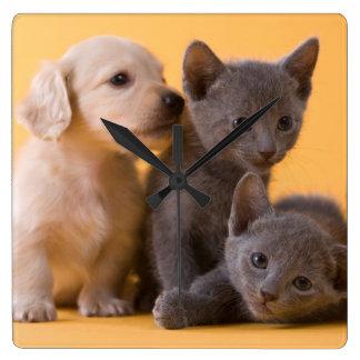 ロシアので青い子ネコ及びダックスフントの子犬 スクエア壁時計