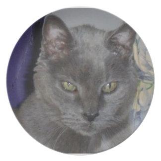 ロシアのな青猫のプレート プレート