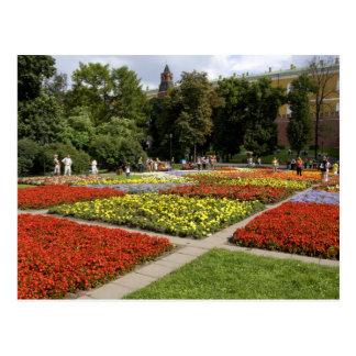 ロシア、モスクワの赤の広場、Alexandrovsky ポストカード
