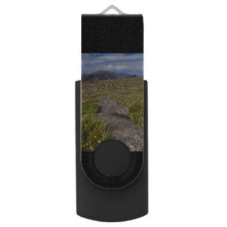 ロッキー山国立公園 USBフラッシュドライブ